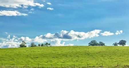 Green hill scenic view Stock Photo - 15825368