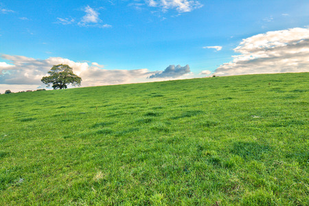 country side: Country side hill