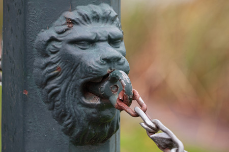 chain fence: Lion head ornament decoration of the chain fence