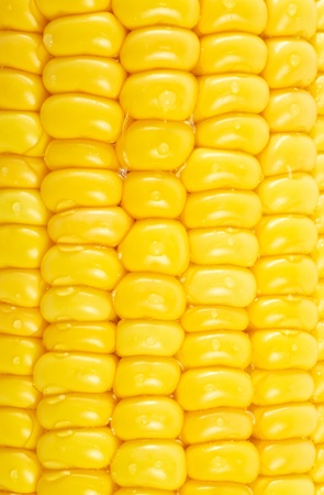 Corn background Stock Photo - 13034670