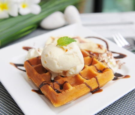 Waffle and ice cream on top with chocolate photo