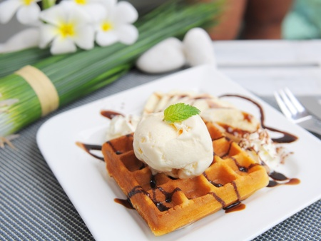 Waffle and ice cream on top with chocolate