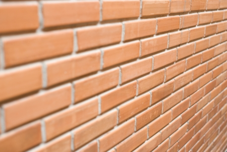 Brick wall with narrow depth of field