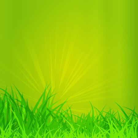 grass close up: an illustrated background of a card for Easter
