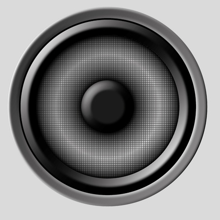 party system: an illustration of a speaker on a neutral background