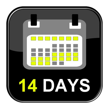 appointment book: Button - 14 days