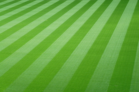 Football field with green grass Stock Photo