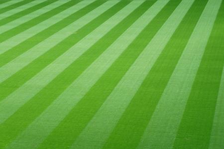 Voetbalveld met groene gras Stockfoto