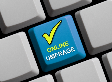 opinion poll: Online survey