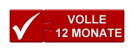months: Puzzle Button: Full 12 months
