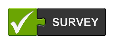 customer survey: Isolated Puzzle Button with symbol showing survey Stock Photo