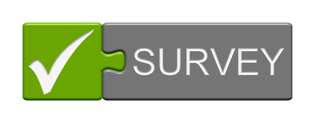 customer survey: Puzzle Button of two puzzle pieces with symbol showing survey green grey