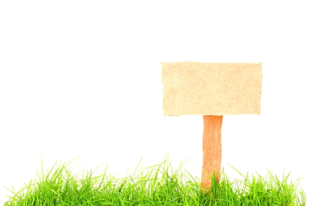 guidepost: Old blank isolated wooden sign with green grass Stock Photo