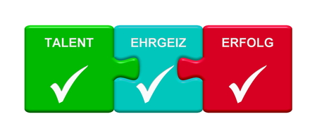 Three Puzzle Buttons with tick symbol showing Talent Ambition Success in german language