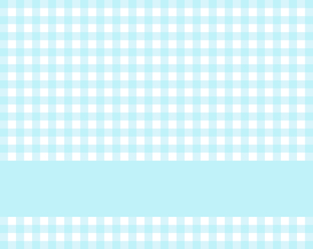 Light blue and white checkered tablecloth background with stripe