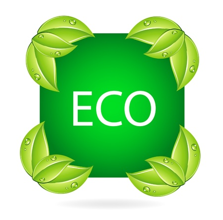 ecological damage: nature eco symbol and leafs