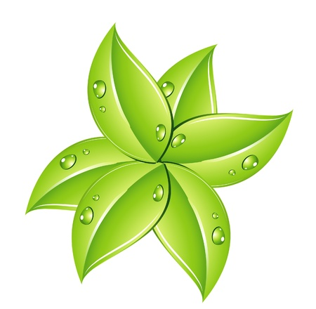 nature green leafs sign on the white Vector