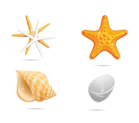 stella marina: mare arancione segno set