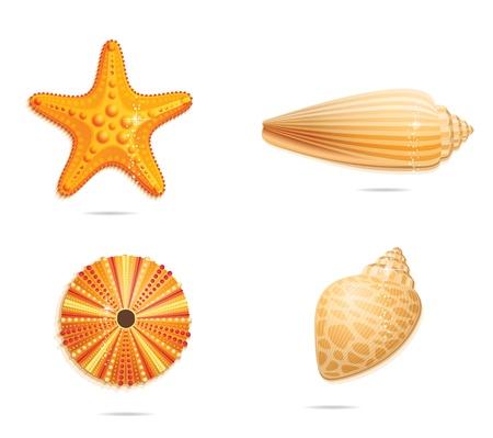 abstract  yellow sea symbols set Stock Vector - 14505374