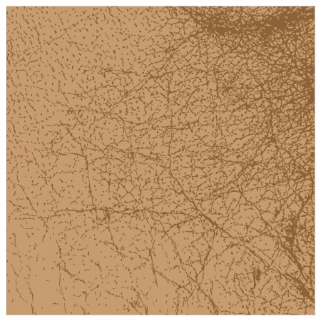 currying: Perfect vector brown leather texture isolated