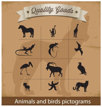 animals and birds pictogram symbols set Vector