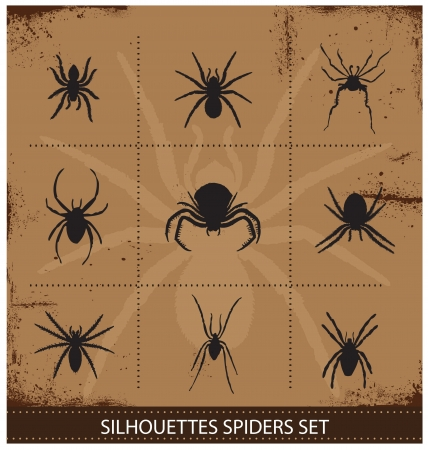 crawlies: spiders silhouettes vector collection