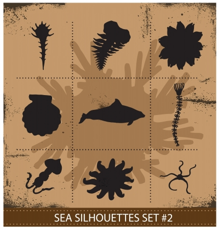 freshwater turtle: Abstract silhouette sea animals isolated