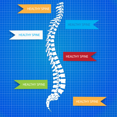Medic spine human on the blueprint. Easy to use. Illustration