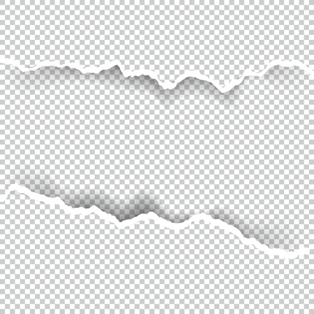 Ripped paper on transparent background. Illustration