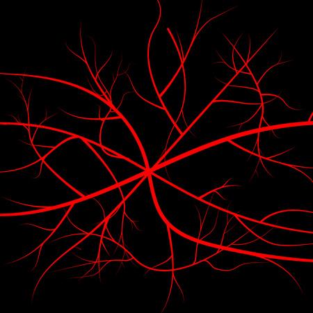 Human blood veins, red vessels Illustration