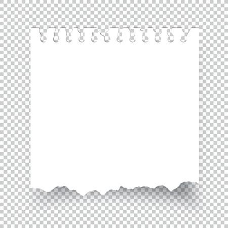 透明で分離された引き裂かれた付箋紙