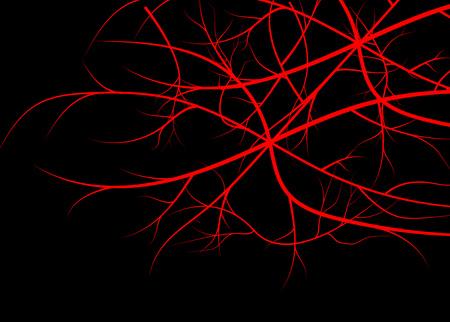 arterial: Blood veins, red vessels on black background.