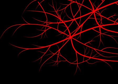 Blood veins, red vessels on black background.