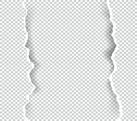 Ripped paper transparent with space for text, vector art and illustration. Illustration