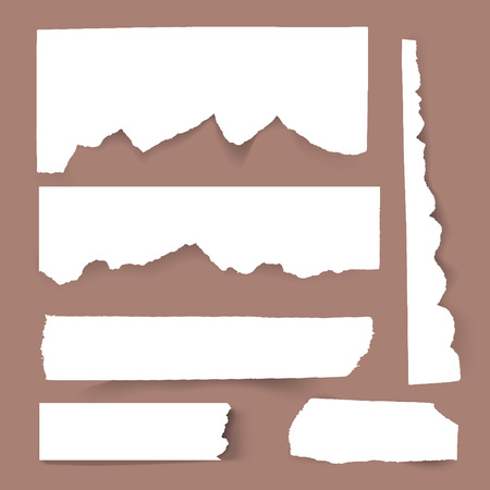 Set of blank Torn paper sheets. Vector note pieces collection with sticky tape. Illustration