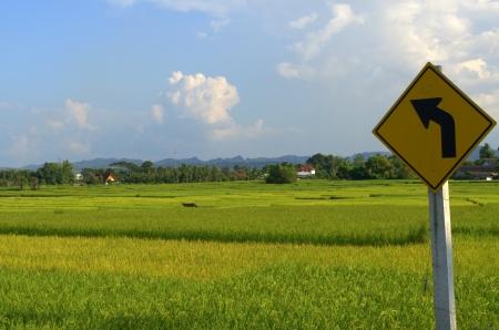 Farm in northern Thailand photo
