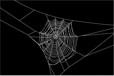 cobwebby: Cobweb Illustration