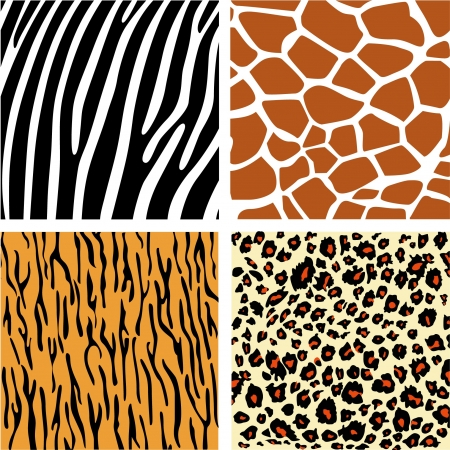 A collection of four different animal print backgrounds  Vector