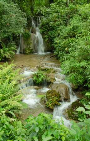 Waterfall surrounded by forests and mountains photo