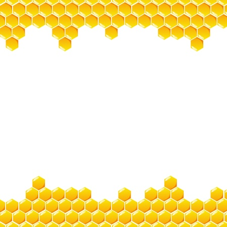 Honeycomb vector on white background Ilustração