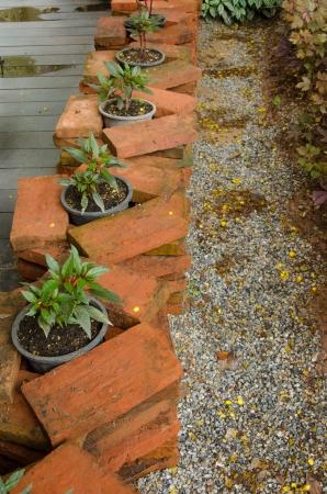 Flowers in pots on orange Block in the garden photo