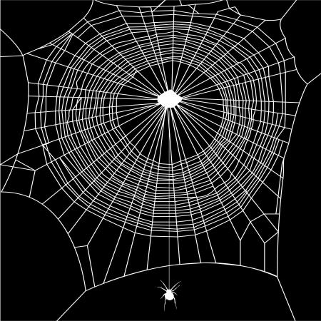 spinneweb vector op zwarte achtergrond