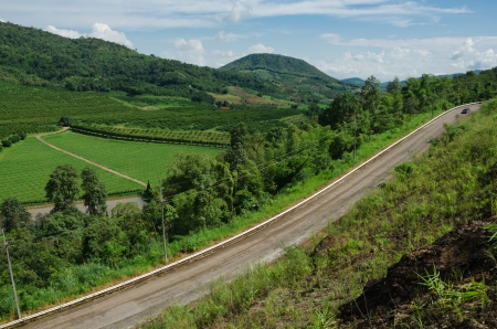 curvature: Mountain and road curvature