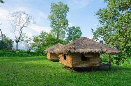 Cottage in Thailand garden,hut in green meadow photo