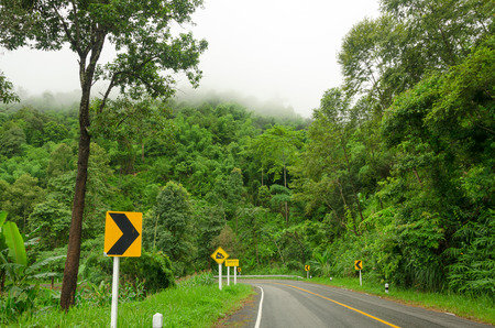 Curve road and rainforest in Thailand mountain photo