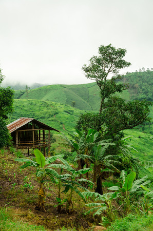 Small hut in mountain, Thailand photo