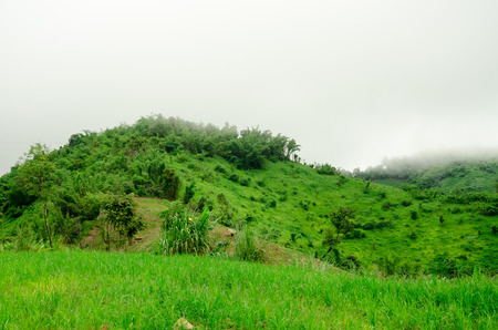 Fog on mountains in the rainy season,Thailand photo