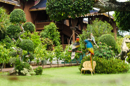 Wooden parrot in garden photo