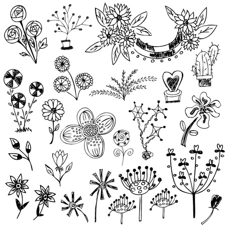 flower sketch: flower sketch set