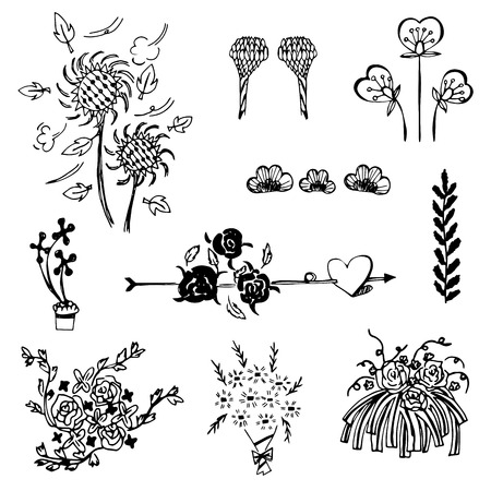 set of flower sketch vector,free hand drawing doodle sketch on white background Vector
